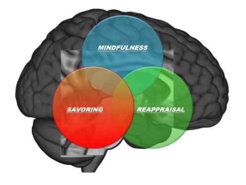 mind-reappraise-savor-brain1